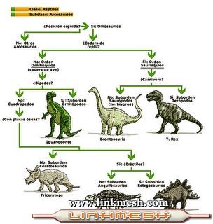 Clasificaci�n de los dinosaurios