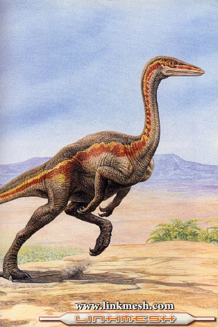 Herrerasaurios