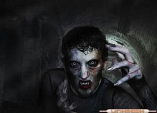 El Vampiro Arnold Paole
